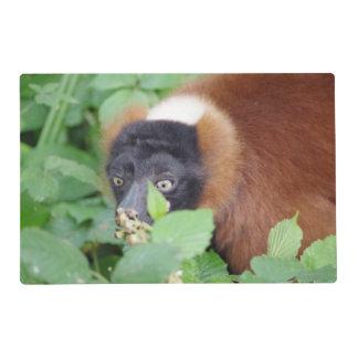 Lemur Placemat by Deb Vincent