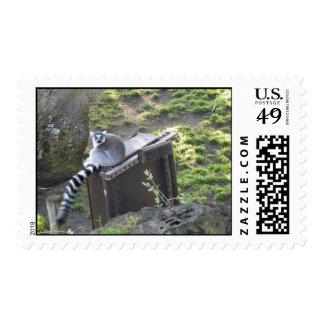 Lemur Postage