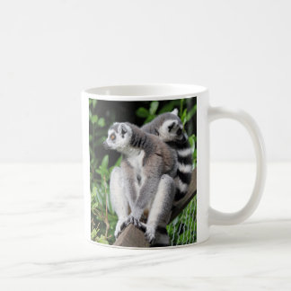 Lemur ring-tailed beautiful photo coffe, tea mug