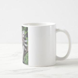 Lemur ring-tailed cute photo coffe, tea mug