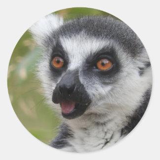 Lemur Sticker