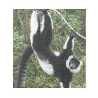 Lemur superado blanco y negro, (Varecia Blocs De Papel