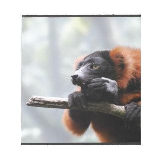 Lemur superado rojo libreta para notas