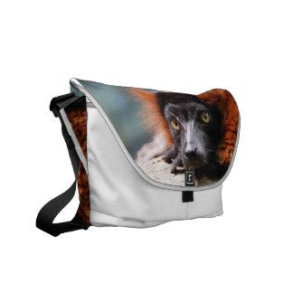 Lemur superado rojo de reclinación bolsa messenger