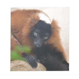 Lemur superado rojo divertido libretas para notas