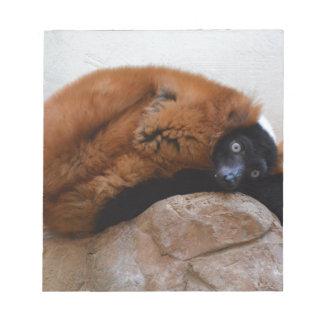 Lemur superado rojo lindo libreta para notas