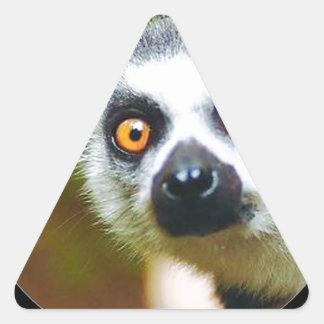 """Lemur"" Triangle Sticker"