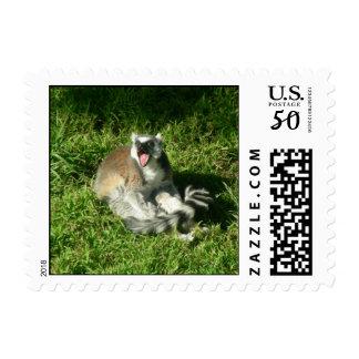 Lemurs 005 Stamp