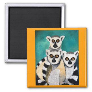 lemurs 2 inch square magnet