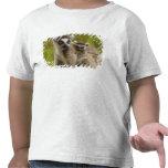 lemurs Anillo-atados (catta) del Lemur madre y beb Camisetas