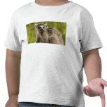 lemurs Anillo-atados (catta) del Lemur madre y Camiseta