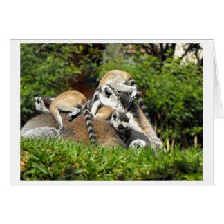 Lemurs atados anillo juguetón del bebé tarjeta de felicitación
