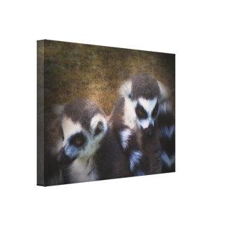 Lemurs Stretched Canvas Prints