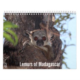 Lemurs of Madagascar Calendar