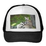 Lemurs Trucker Hat