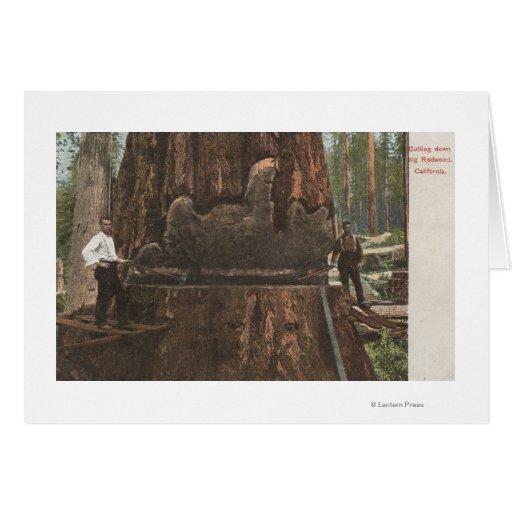 Leñadores que reducen un árbol de la secoya tarjeta de felicitación