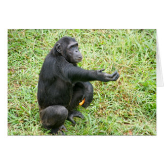 Lend a chimp a hand! card