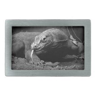 lengua blanco y negro del dragón de komodo hacia f hebillas cinturon rectangulares