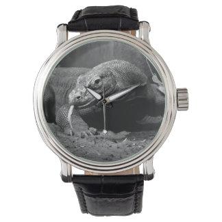 lengua blanco y negro del dragón de komodo hacia relojes