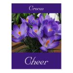 Lengua de la alegría del azafrán de las flores postal