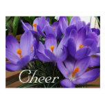 Lengua de la alegría del azafrán de las flores tarjeta postal