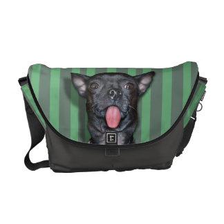 Lengua de perro de la chihuahua bolsas messenger