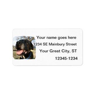 Lengua del rosa del perro negro que sonríe en cáma etiquetas de dirección
