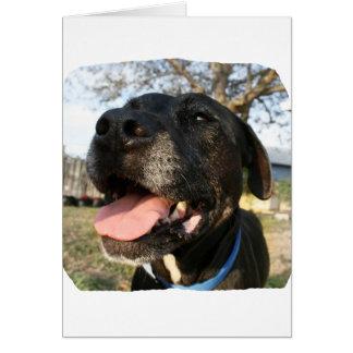 Lengua del rosa del perro negro que sonríe en tarjeta pequeña