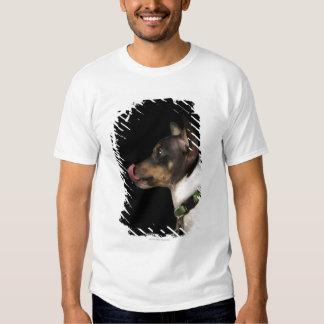 Lengua fuera de la rata Terrier blanco y negro Polera