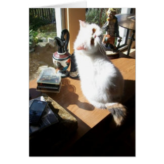 Lenore in the sun greeting card