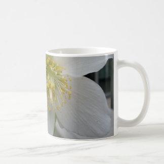 Lenten Rose Flower Mug