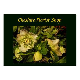Lenten Rose Hellebore Florist Large Business Cards (Pack Of 100)