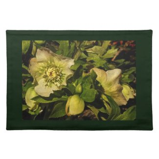 Lenten Rose Hellebore Placemat