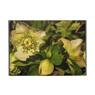 Lenten Rose Hellebores iPad Mini Covers