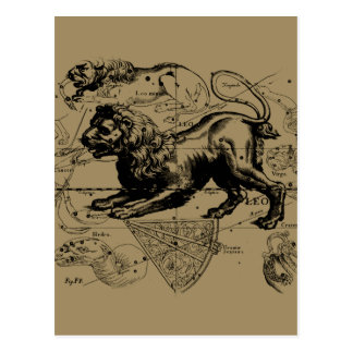 Leo Constellation Map Hevelius circa 1690 Postcard