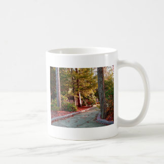 Leo Harrison St Pk  Path 2.JPG Coffee Mug