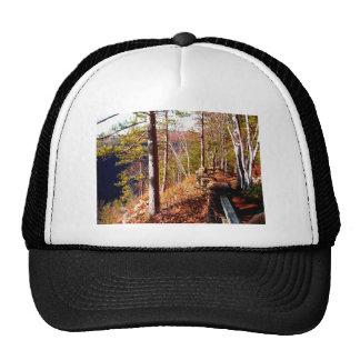 Leo Harrison St Pk  Path 3 Cliffside Path.JPG Trucker Hat