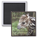 Leo the Andean Tapir 2 Inch Square Magnet