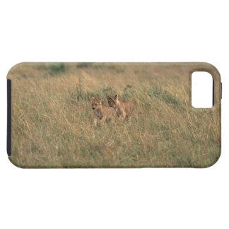 León 9 iPhone 5 Case-Mate funda