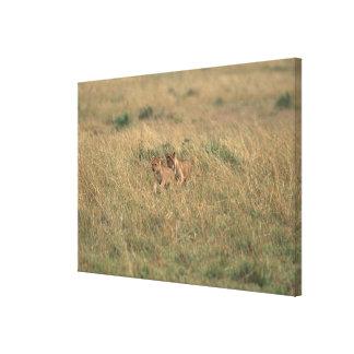 León 9 impresión en lona