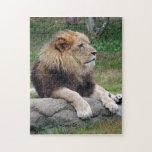 león africano 14 rompecabeza con fotos