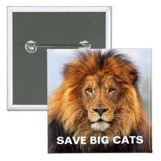 León africano 1 pin cuadrado