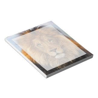 León africano bloc de papel