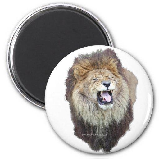 león africano imán para frigorífico