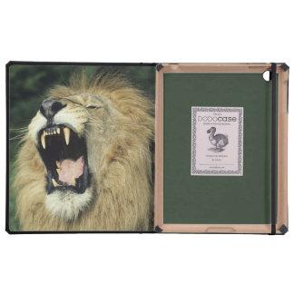 león africano masculino Negro-crinado que bosteza iPad Coberturas