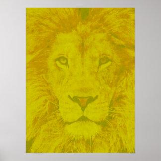 León amarillo majestuoso poster