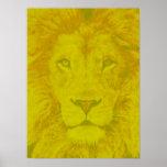 León amarillo majestuoso póster
