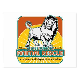 León animal del rescate tarjetas postales