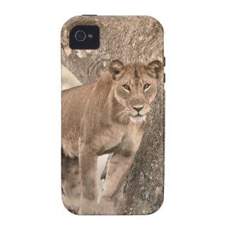 león Árbol-que sube Uganda África Case-Mate iPhone 4 Funda