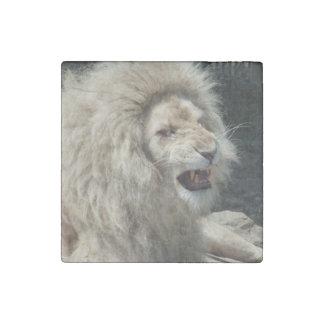 León blanco del gruñido imán de piedra